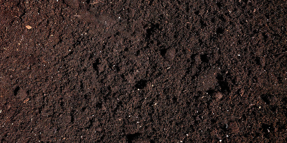 Humic substances