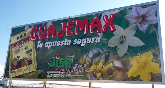 Mejorar la inducción floral, floración y cuajado
