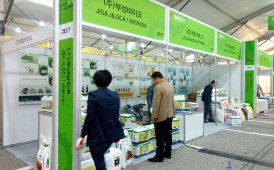 Feria de Tamas en Corea