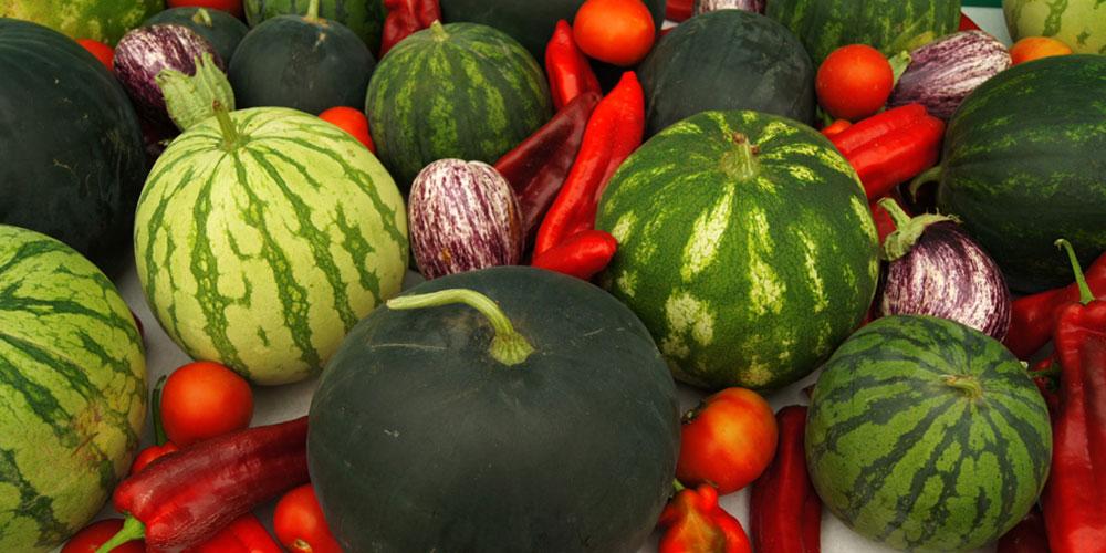 Engorde de frutos
