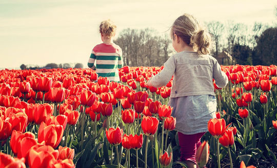 Futuro Reglamento UE de Fertilizantes