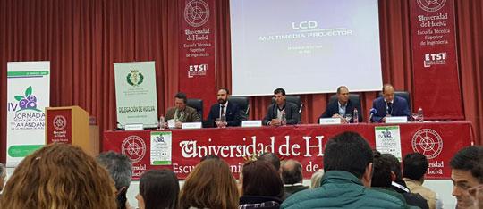 Cultivo del arándano en Huelva